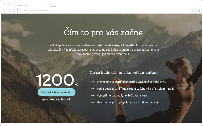 DA - Web - Pripadovky - Well 02